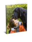 STANDOUT Relationships eBook